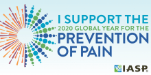 I support the 2020 Global Year for the Prevention of Pain